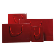 Gift Paper Bags with Handles